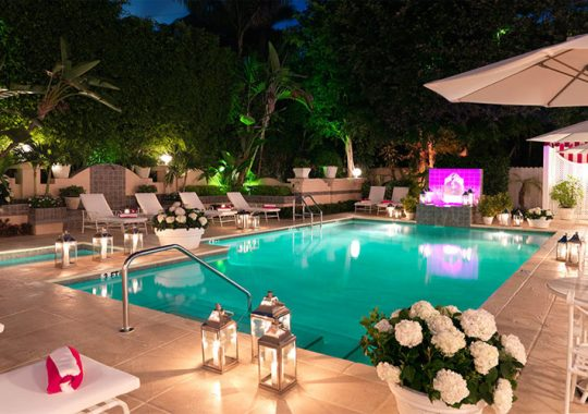 Old-World Elegance and Charm at the Chesterfield Palm Beach Hotel