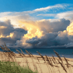 Places to Visit in Vero Beach, Florida