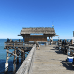 The Best Tourist Spots in Cocoa Beach, Florida