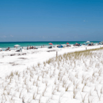 The Exotic Wonders of Panama City Beach, Florida
