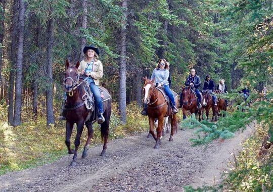 Beautiful Horseback Riding Trails in Florida, Something for Everyone